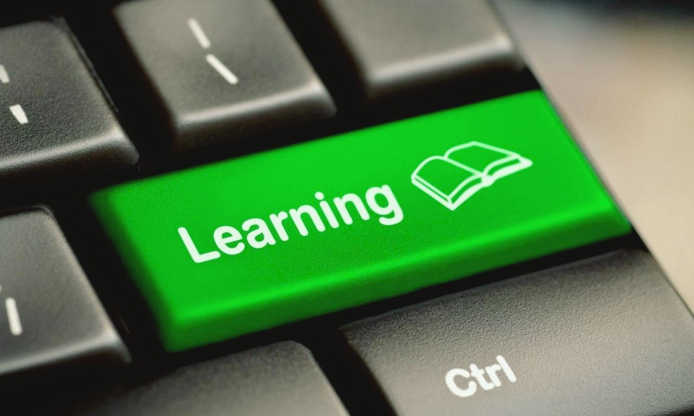 Insight into distance learning programs